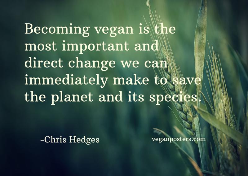 Vegan Dinner with Chris Hedges