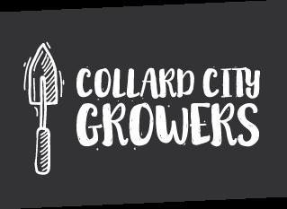 Collard-City-Growers