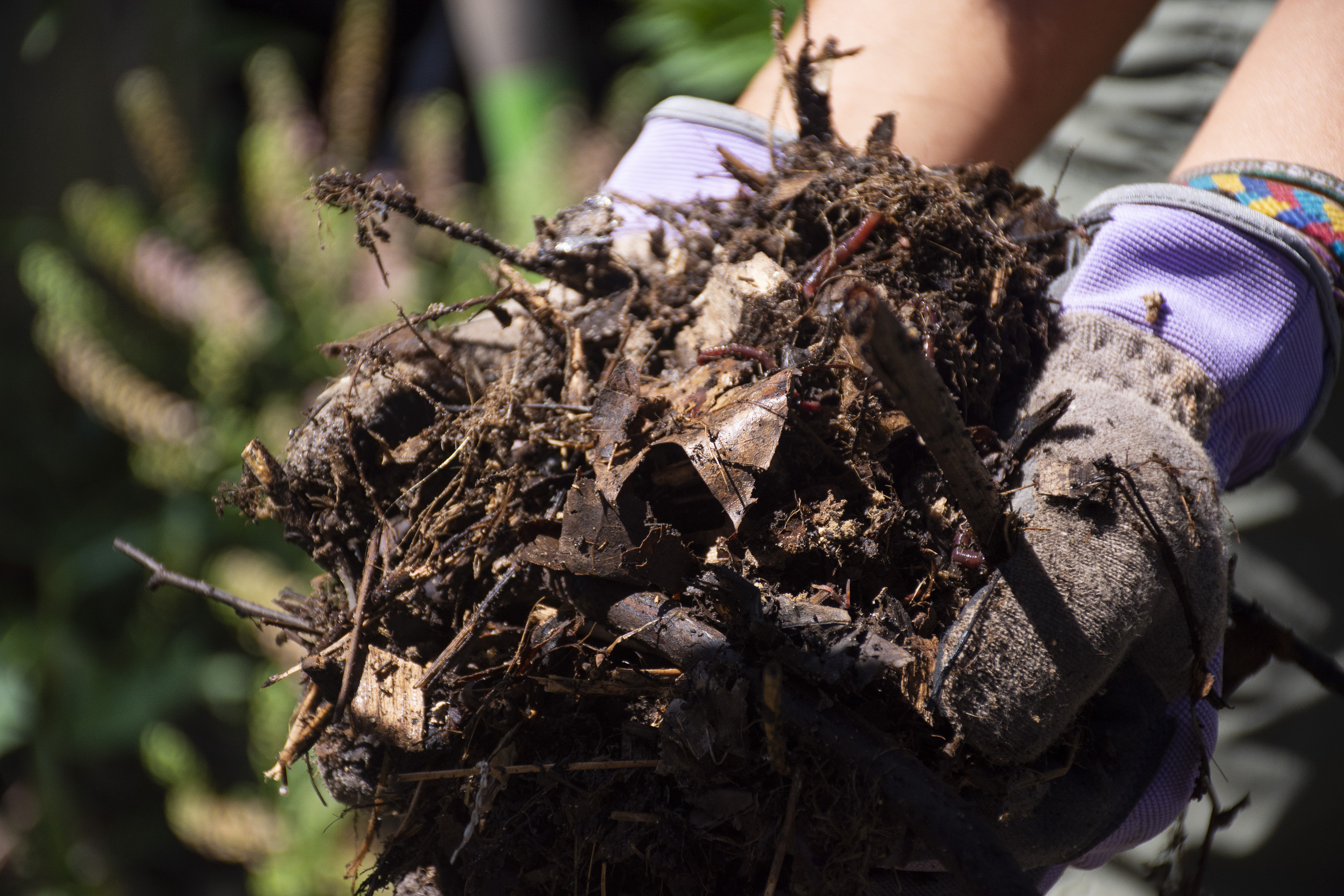 Table Top Composting