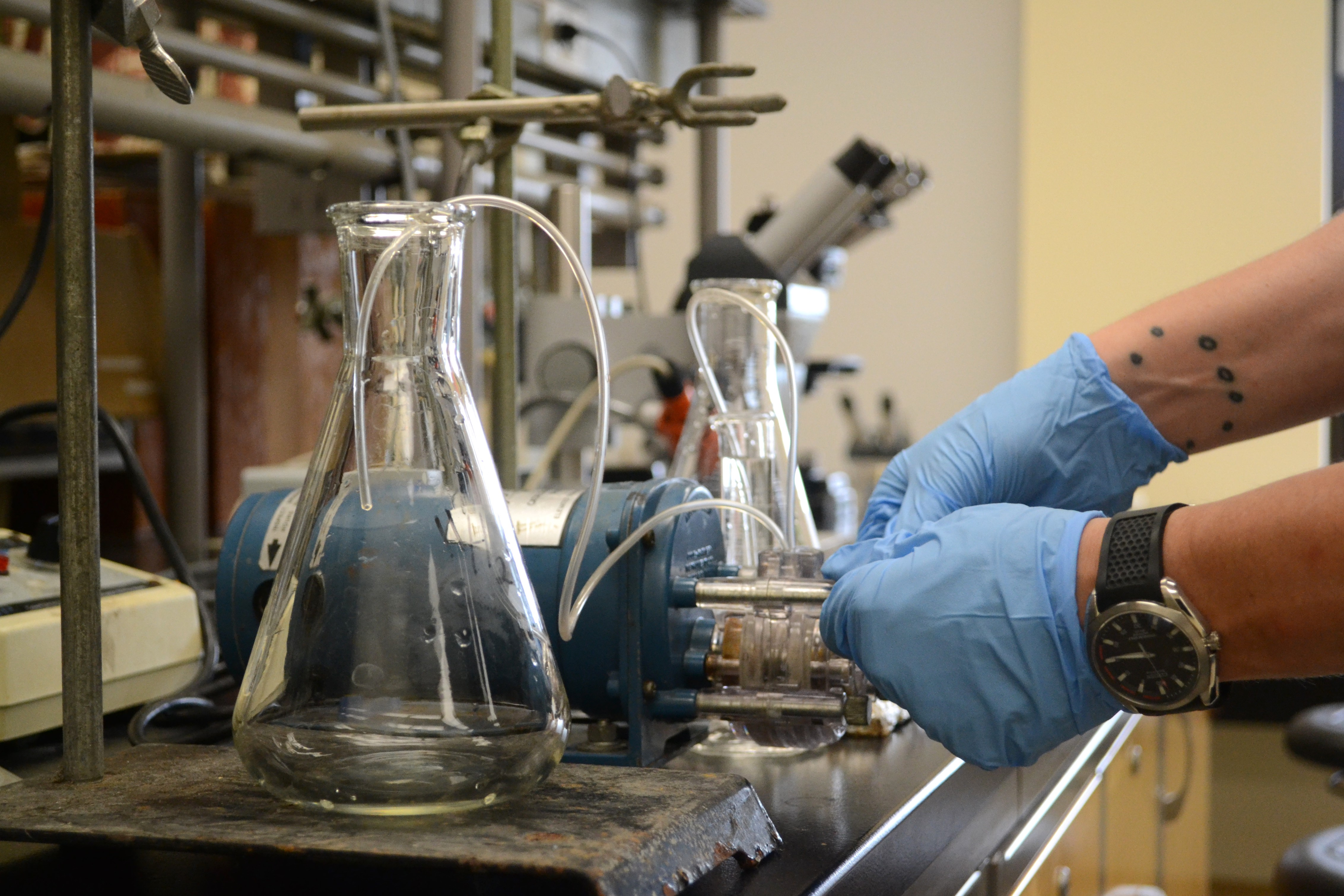 NATURE Lab workshop -- Hormone Hacking: Harvesting Endocrine Disruptors  with bioartist Byron Rich