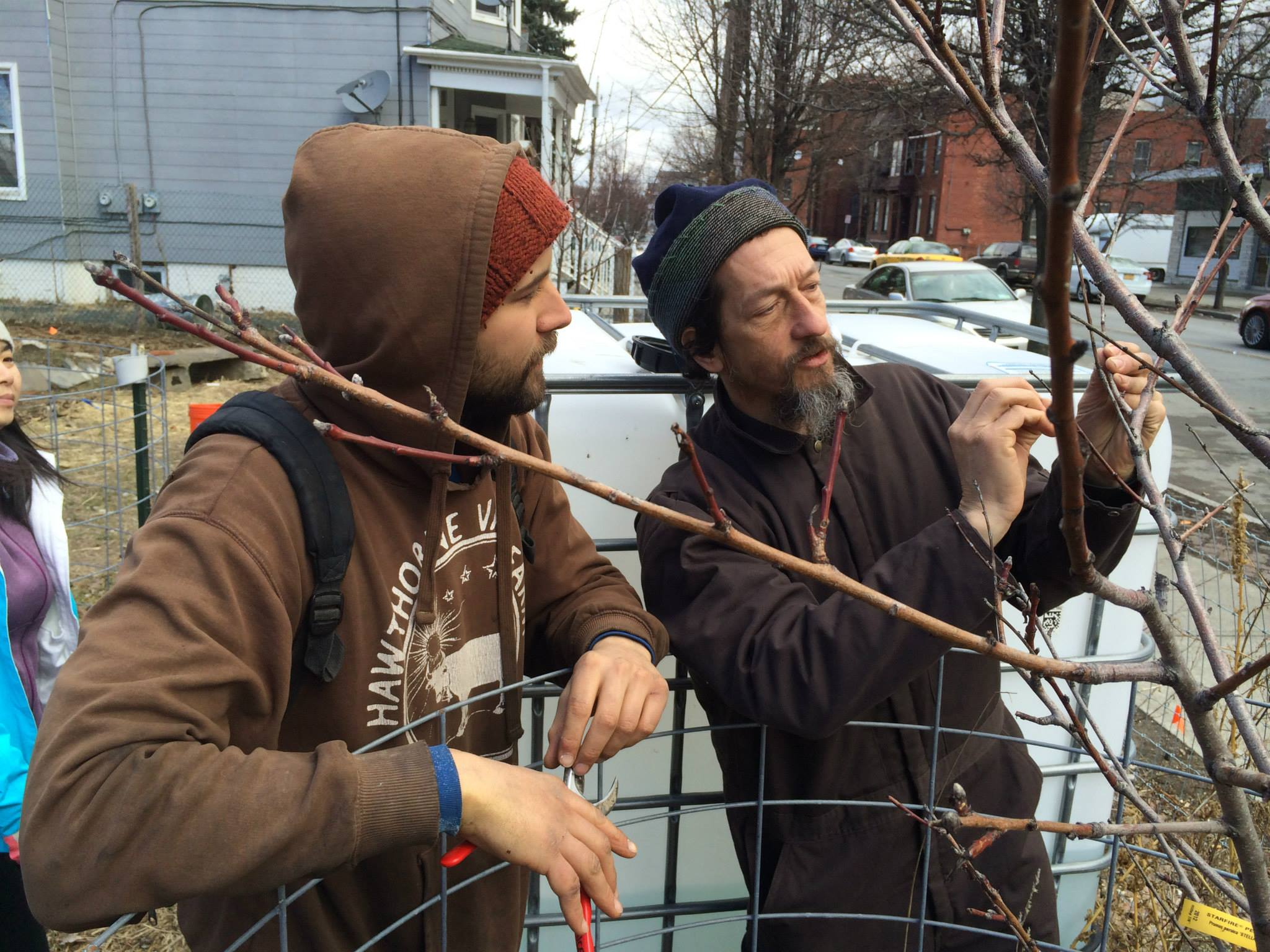 Sticky Situation: The Magic of Grafting and More