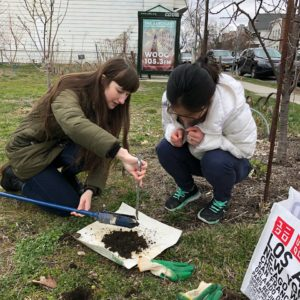Hazelle Lerum soil sampling for NATURE Lab with Ellie Irons and Angel