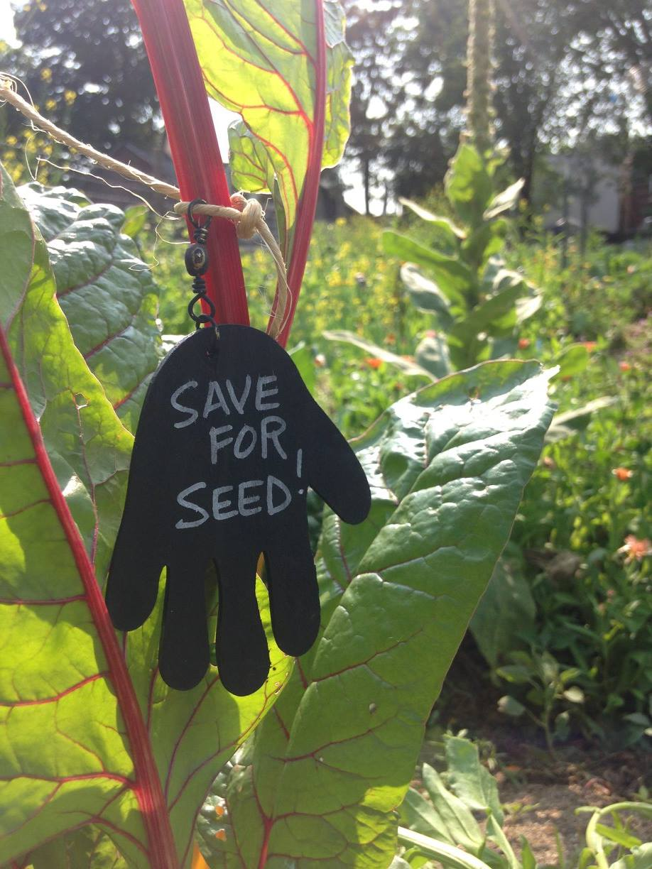 NATURE Lab Workshop: Urban Sprout Entrepreneurship Incubator